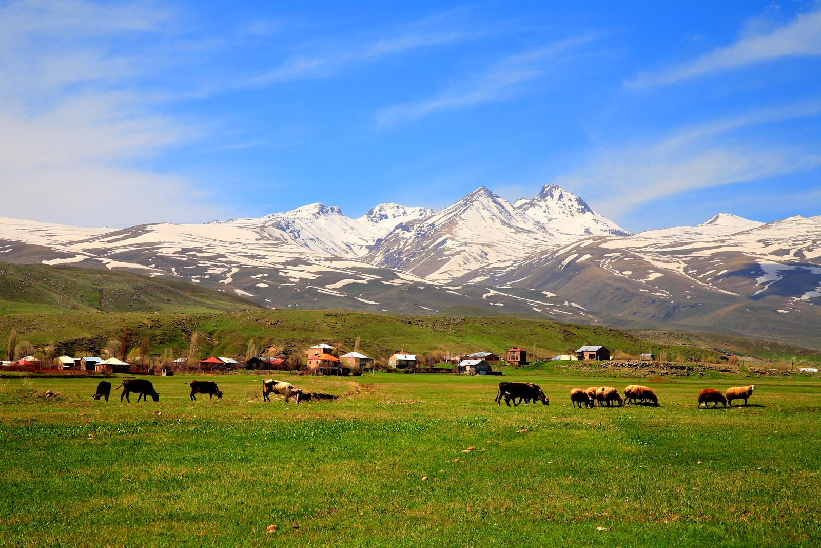 Армения лечение. Армянское бюро путешествий
